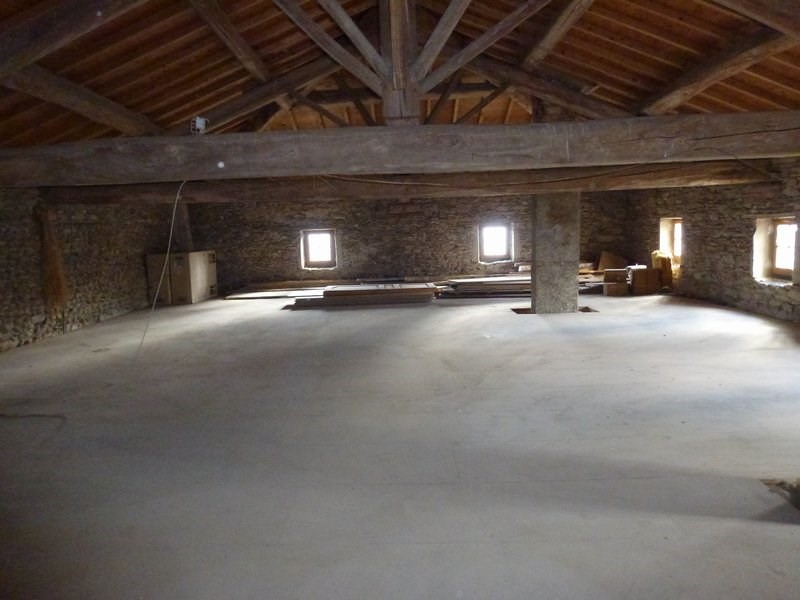 Vente maison / villa Chateauneuf de galaure 400000€ - Photo 16