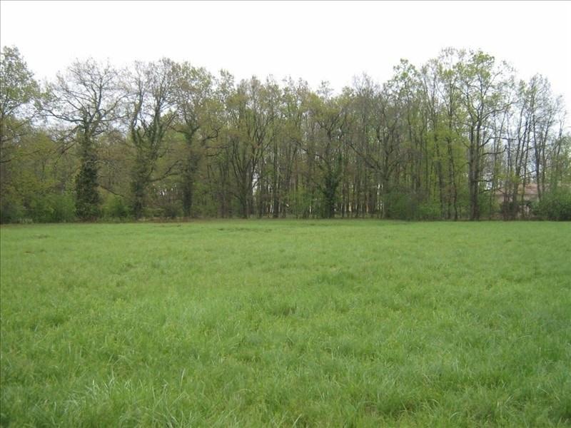 Vente terrain Montauban-falguieres 73500€ - Photo 1