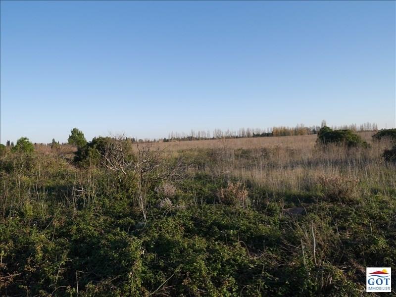 Revenda terreno St hippolyte 13500€ - Fotografia 2