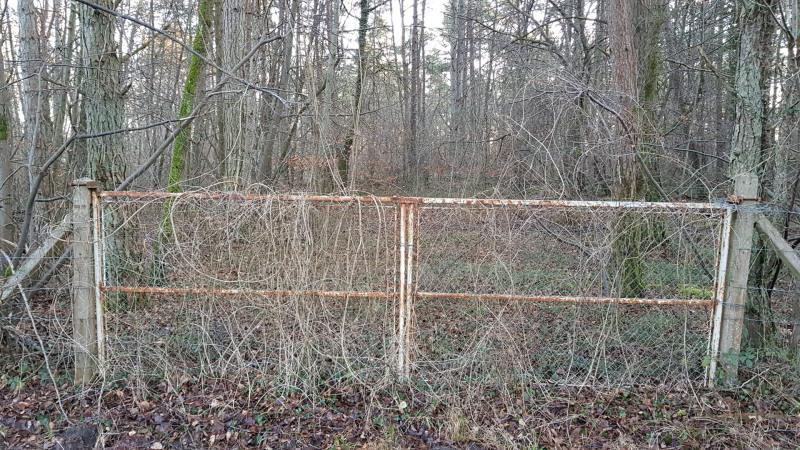 Vente terrain Montigny-sur-loing 130000€ - Photo 5