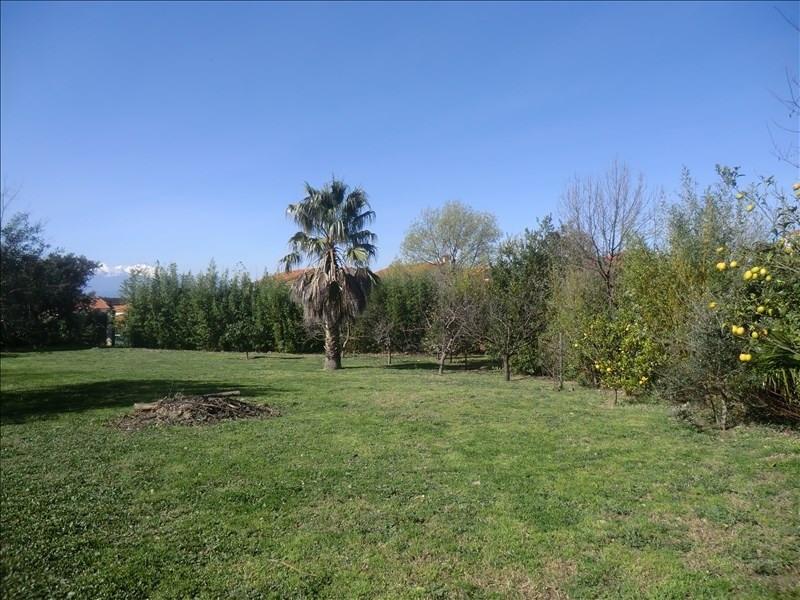 Sale site Villelongue dels monts 175000€ - Picture 2