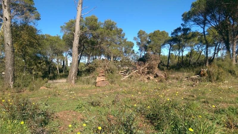 Vente terrain Le cannet des maures 171000€ - Photo 2