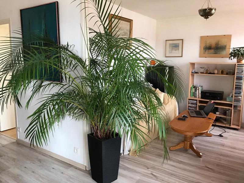 Vente appartement Tarbes 85600€ - Photo 4