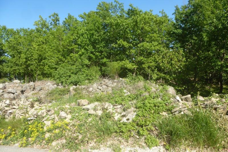Vente terrain Vesseaux 84090€ - Photo 12