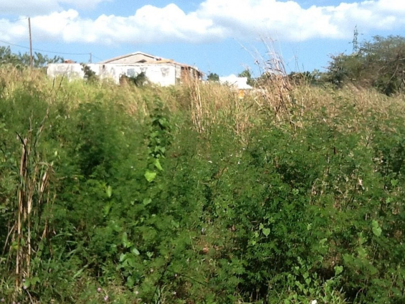 Sale site Baie mahault 289 560€ - Picture 3