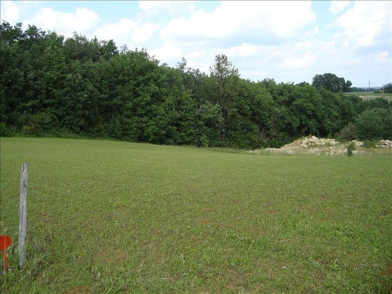 Vente terrain Monclar de quercy 55000€ - Photo 3