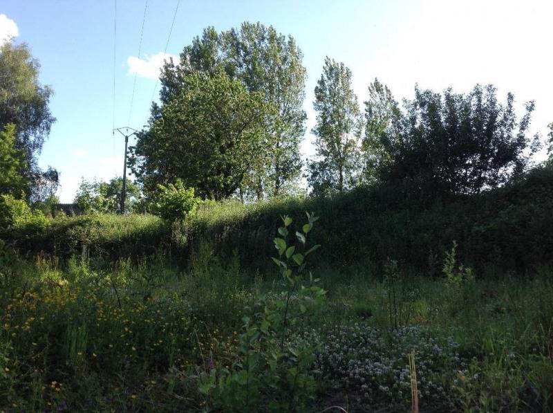 Vente terrain Ligny les aire 37000€ - Photo 2