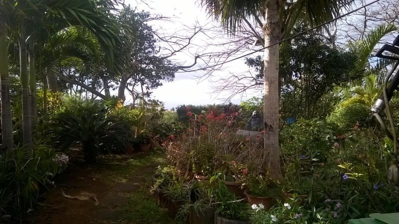Sale house / villa La riviere 294 000€ - Picture 6