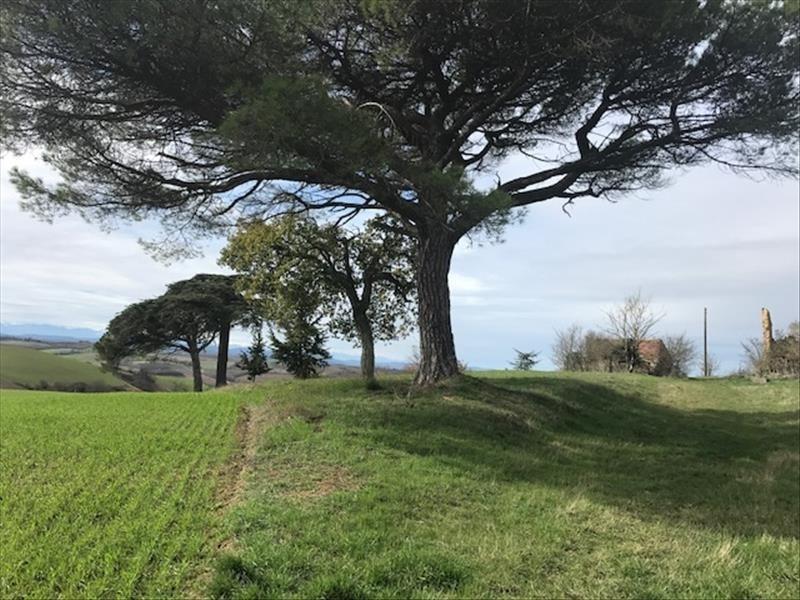 Vente terrain Rieux 267500€ - Photo 3