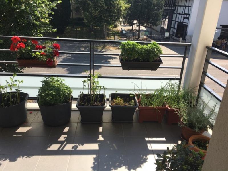 Vermietung wohnung Strasbourg 700€ CC - Fotografie 3