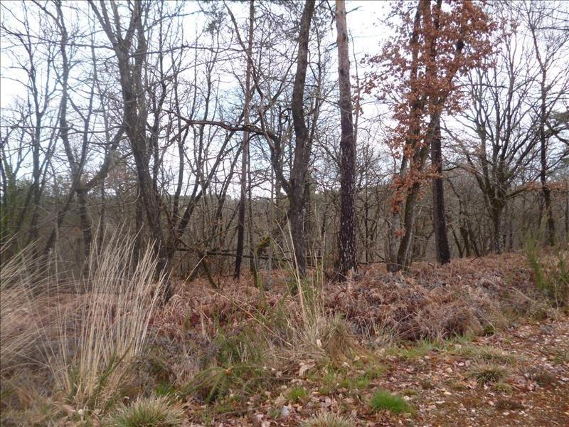Vente terrain Marsac sur l isle 39000€ - Photo 2