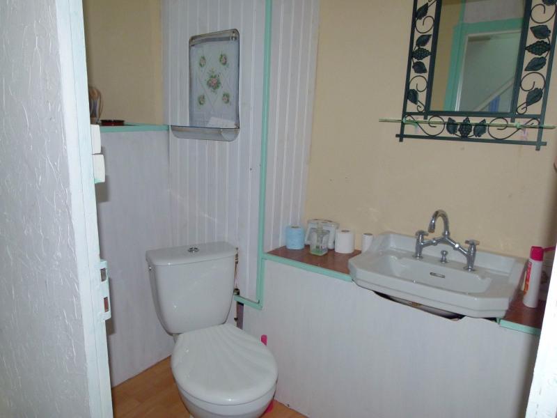 Vente maison / villa Allegre 65000€ - Photo 12