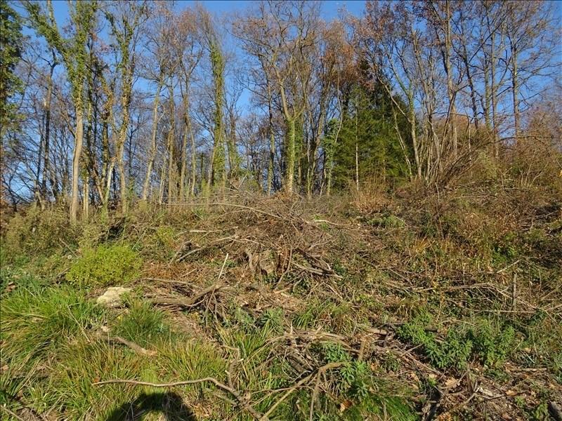 Vente terrain Oytier st oblas 110000€ - Photo 3