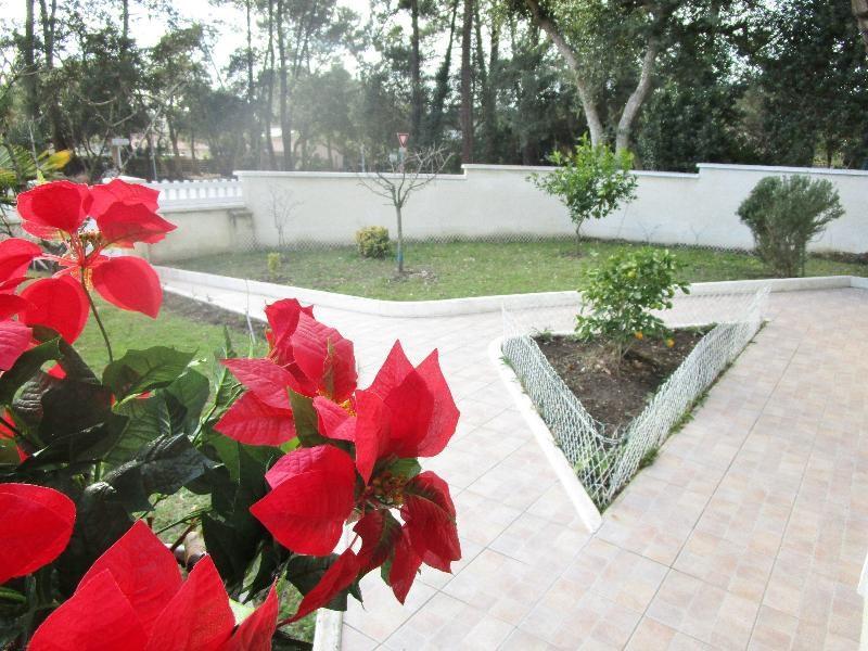 Vente maison / villa Labenne 304500€ - Photo 4