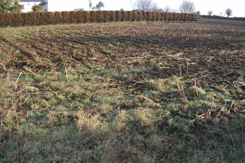 Vente terrain Confort meilars 51 360€ - Photo 1