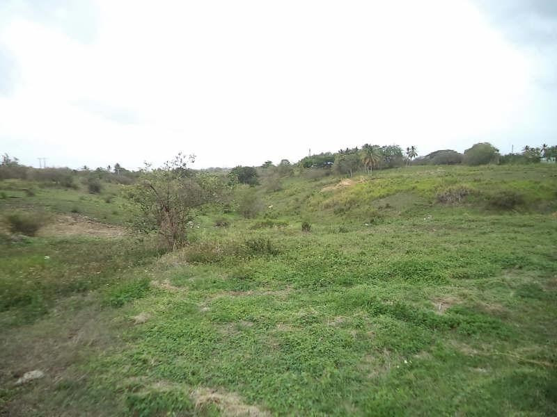 Vente terrain Ste anne 324000€ - Photo 4