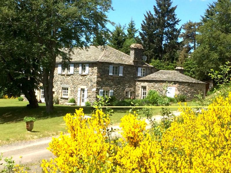 Vente maison / villa Le chambon sur lignon 500000€ - Photo 11