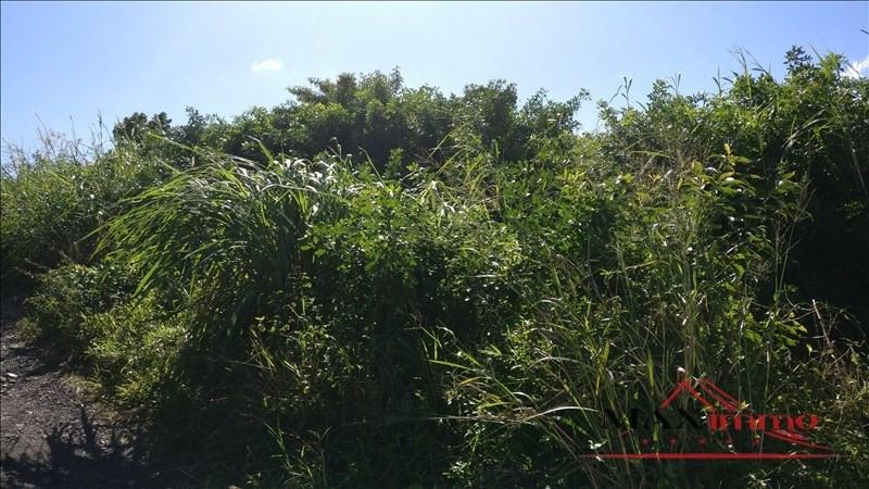 Vente terrain St joseph 106000€ - Photo 1