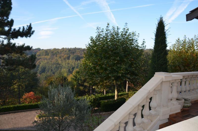 Deluxe sale house / villa Valencin 580000€ - Picture 10