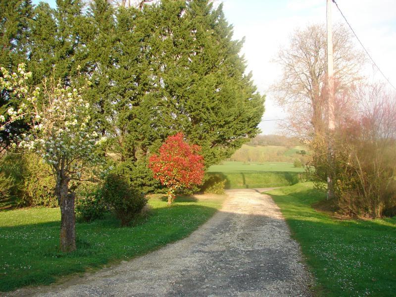 Vente maison / villa Mauvezin 283000€ - Photo 5