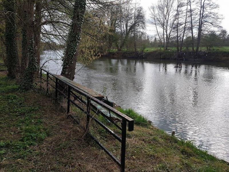 Sale site Montigny sur loing 23000€ - Picture 7