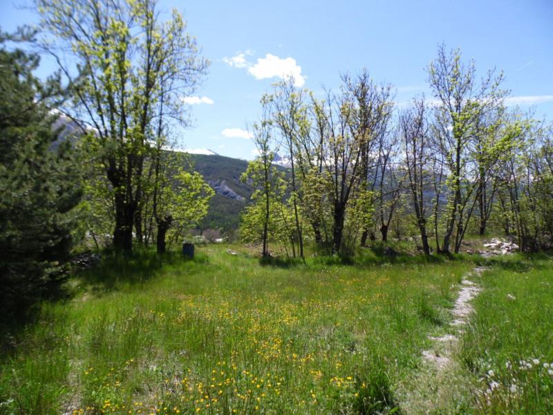 Vente terrain Faucon-de-barcelonnette 55000€ - Photo 2