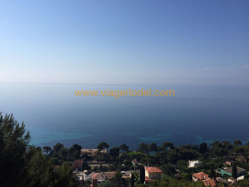 Verkauf auf rentenbasis haus Èze 550000€ - Fotografie 15
