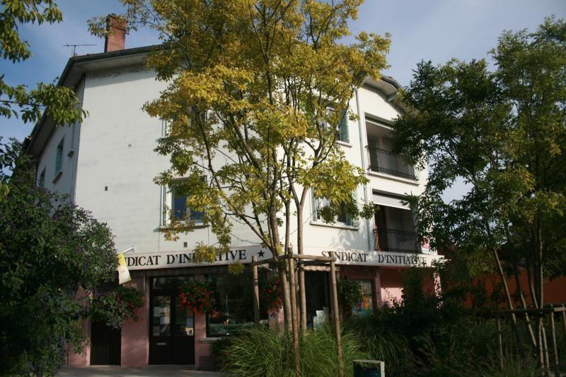 Location appartement Pont-d'ain 620€ CC - Photo 9