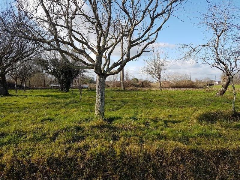 Vente terrain Hagetmau 38500€ - Photo 1