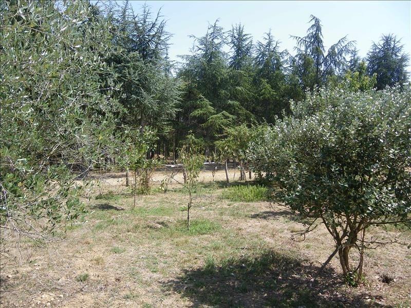 Vente terrain Campsas 240000€ - Photo 1