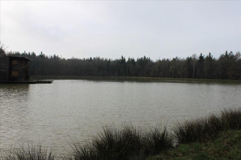 Verkoop  stukken grond Arzay 215000€ - Foto 7