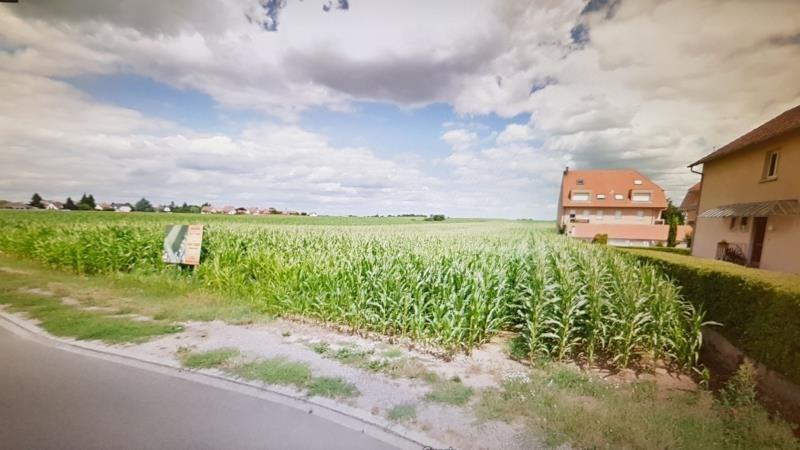 Verkauf grundstück Stutzheim offenheim 185000€ - Fotografie 5