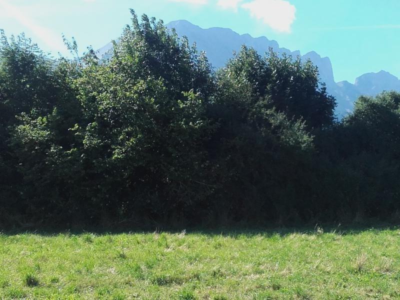 Vente terrain Poligny 95000€ - Photo 2