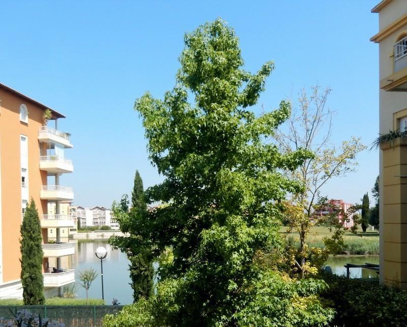 Vente appartement Lattes 289000€ - Photo 5