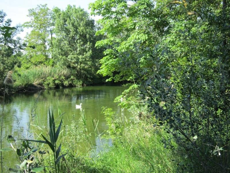 Sale house / villa Carcassonne 495000€ - Picture 7