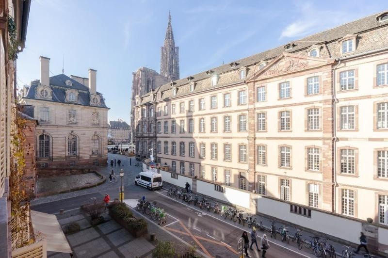 Location vacances appartement Strasbourg 585€ - Photo 6