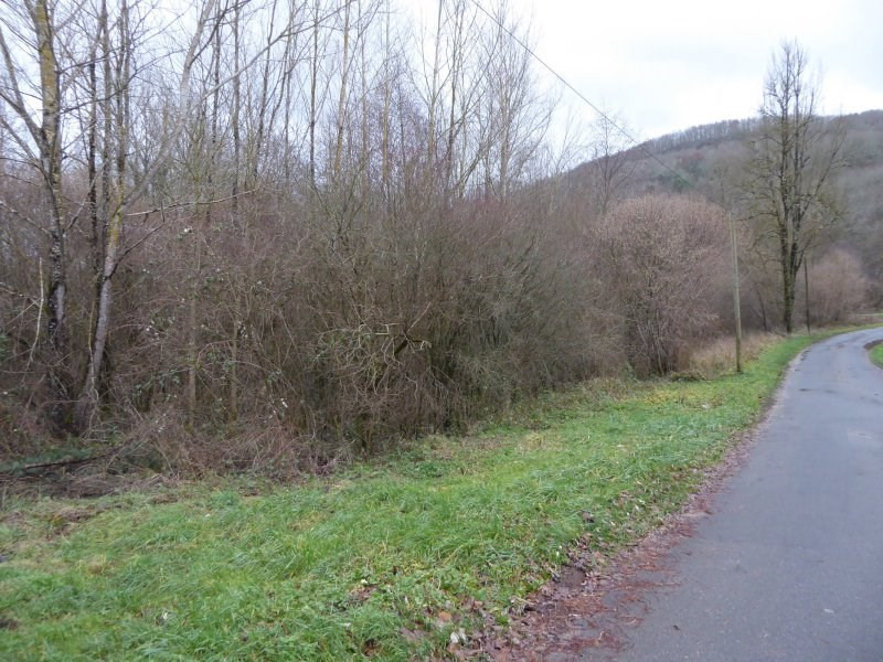 Vente terrain Peyrignac 1 300€ - Photo 2