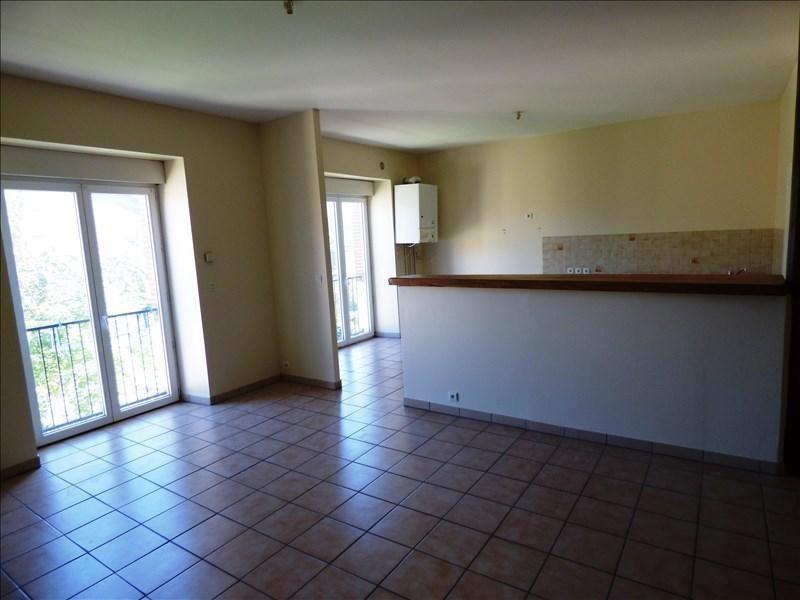 Location appartement Secteur de mazamet 560€ CC - Photo 2
