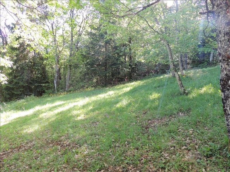 Vente terrain Farges 250000€ - Photo 2
