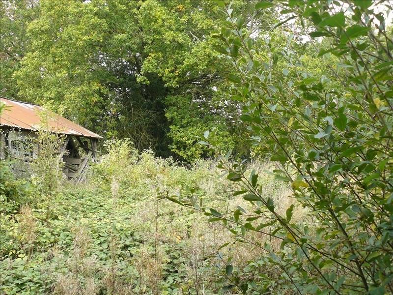 Vente maison / villa Lanouee 13000€ - Photo 7