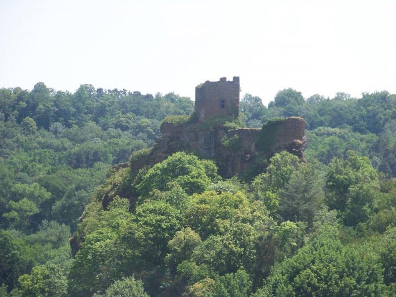 Vente terrain Ceyssac 53000€ - Photo 4