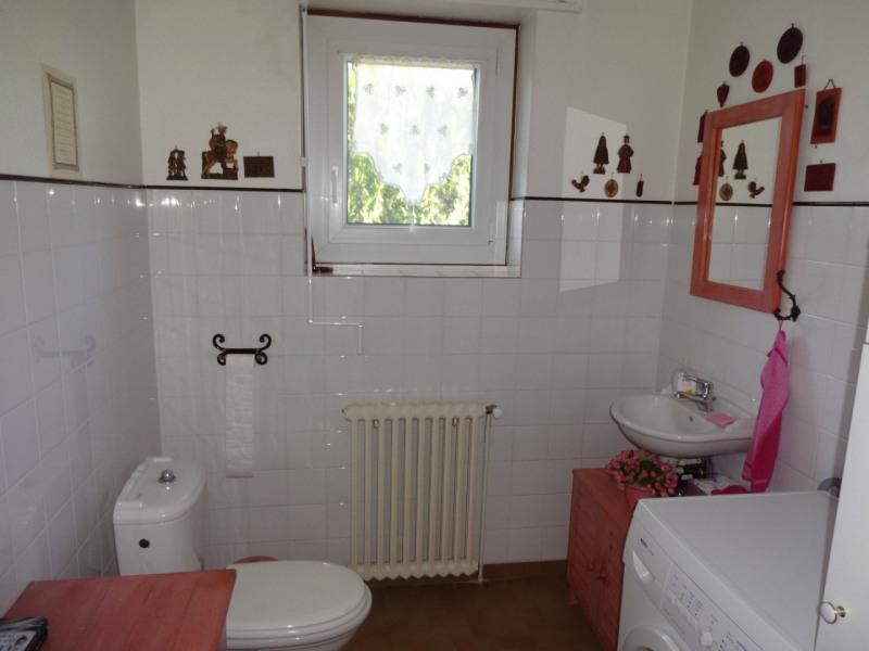 Vente maison / villa Entraigues sur la sorgue 470000€ - Photo 15
