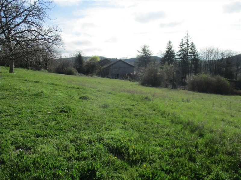 Vente terrain Dionay 67 000€ - Photo 2