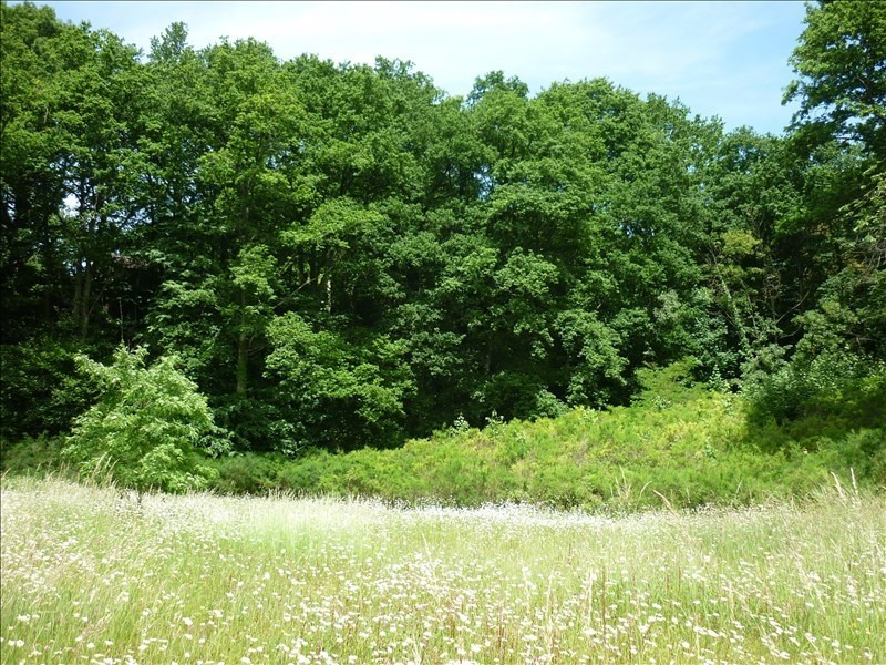 Vente terrain Mortagne au perche 56 000€ - Photo 3