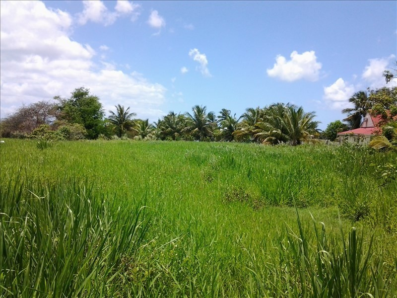 Sale site Morne a l eau 86 000€ - Picture 1