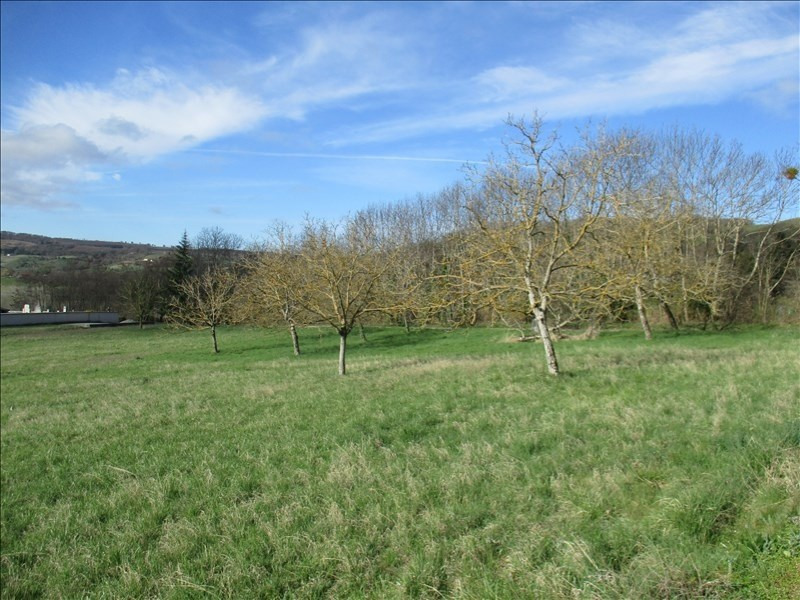 Vente terrain Dionay 78 000€ - Photo 1