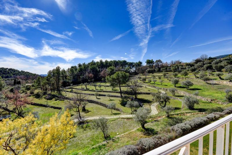 Immobile residenziali di prestigio casa Fayence 2700000€ - Fotografia 14
