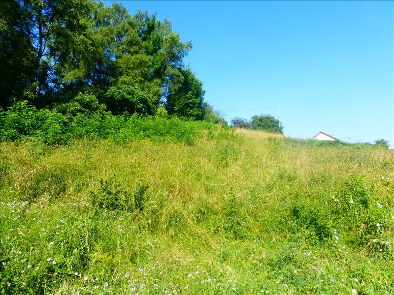 Vente terrain Saone 114 000€ - Photo 2
