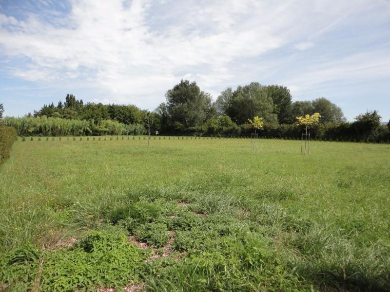 Vente terrain Althen des paluds 50000€ - Photo 5