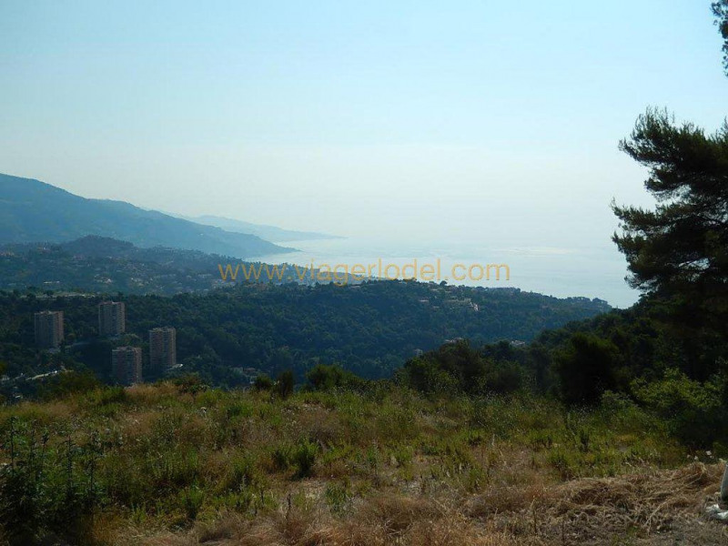 Пожизненная рента дом Roquebrune-cap-martin 335000€ - Фото 24